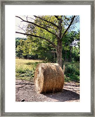 Hay Bay Rolls 4 Framed Print by Lanjee Chee