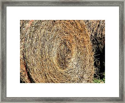 Hay Bay Rolls 5 Framed Print by Lanjee Chee