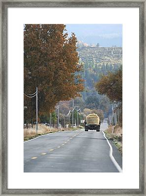 Framed Print featuring the digital art Hay Day by Holly Ethan
