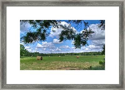 Hay Field In Summertime Framed Print by Douglas Barnett