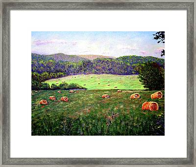 Hay Field Framed Print by Stan Hamilton