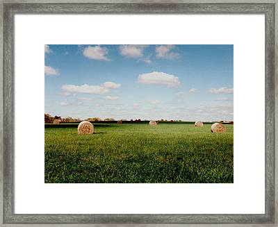 Hay Fields Framed Print