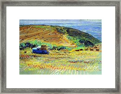 Hay Harvest On The Coast Framed Print by Donald Maier