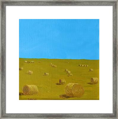 Hay Harvest Framed Print by Tom Amiss