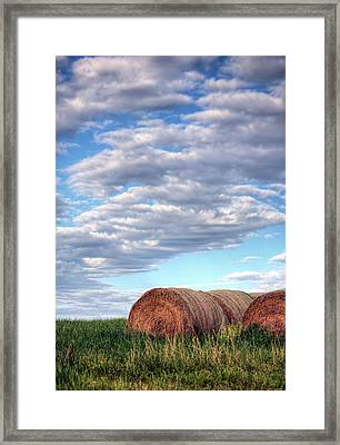 Hay It's Art Framed Print by JC Findley
