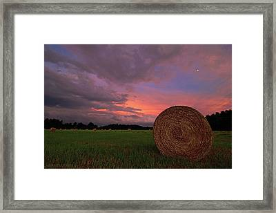 Hay Now Framed Print by Jerry LoFaro