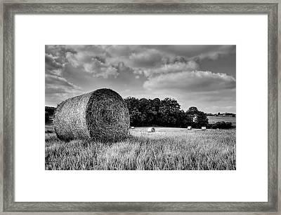 Hay Race Track Framed Print