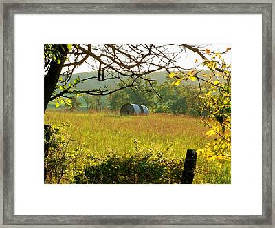 Hay Roll Meadow Framed Print