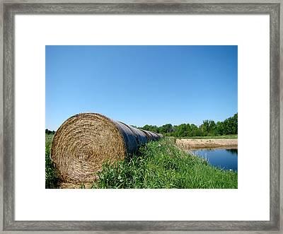 Hay Roll Framed Print by Todd Zabel