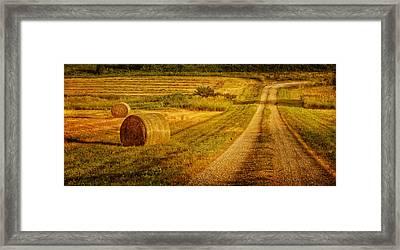 Hay Rolls - Country Road Framed Print by Nikolyn McDonald