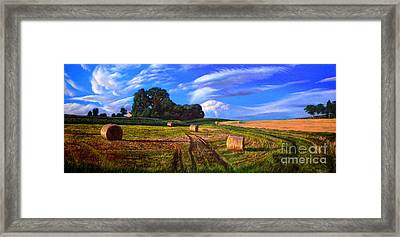 Hay Rolls On The Farm By Christopher Shellhammer Framed Print