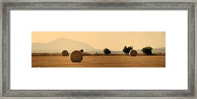 Hay Rolls  Framed Print by Stelios Kleanthous