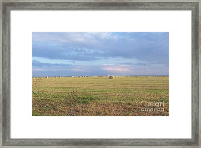 Haybales With Violet Sky Framed Print