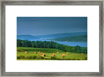 Hayfield And Lake I  Framed Print