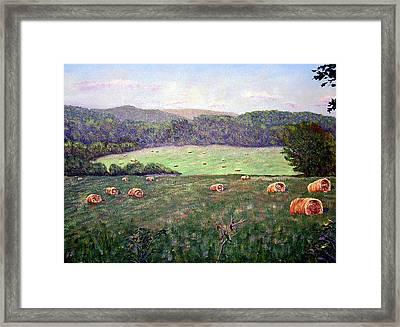 Hayfield  Framed Print by Stan Hamilton