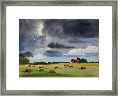 Haying Time Framed Print by Michele Turney