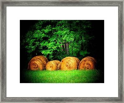 Hayroll Four Framed Print by Michael L Kimble