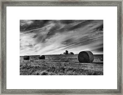 Hayrolls And Field Framed Print