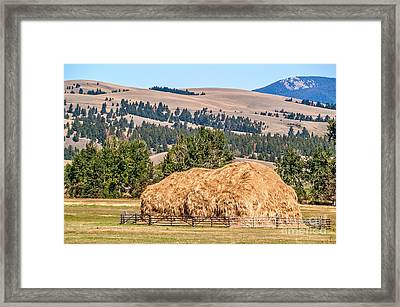 Framed Print featuring the photograph Haystack Created With A Beaverslide by Sue Smith