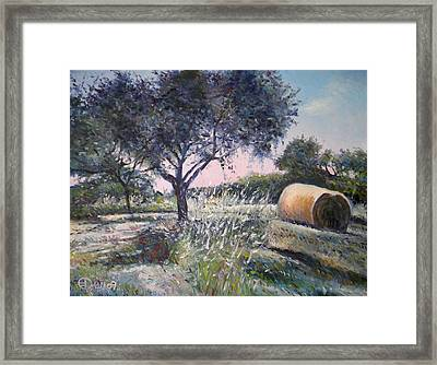 Haystack In Orchid Riano Italy 2009 Framed Print by Enver Larney