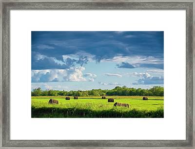 Haystacks In A Meadow Framed Print by Evgeny Buzov