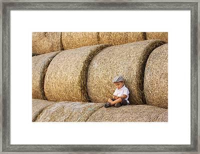 Haystacks Framed Print by Tatyana Tomsickova