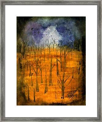 Haze Framed Print by Jason Pliler
