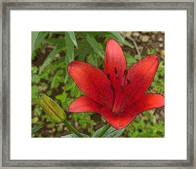 Framed Print featuring the digital art Hazelle's Red Lily by Jana Russon