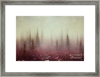 Hazy Days Framed Print