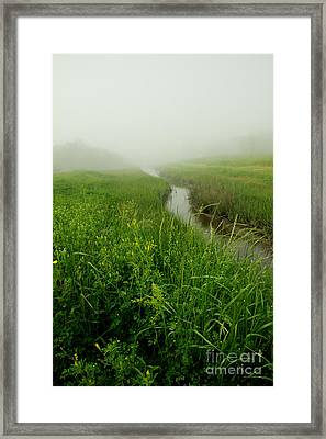 Framed Print featuring the photograph Hazy Morning by Sandy Adams