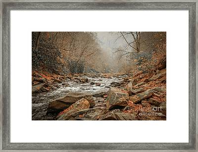Hazy Mountain Stream #2 Framed Print