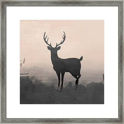 Hazy Stag 2 Framed Print by Amanda Lakey