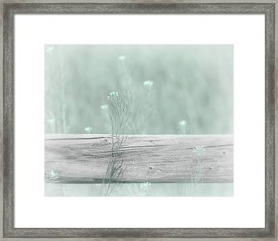 Framed Print featuring the photograph Hazy Teal Wildflowers by Jennie Marie Schell