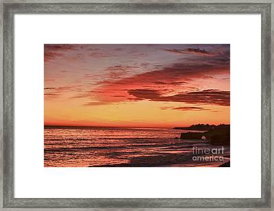 hd 330 Dog Beach 1 HDR Framed Print by Chris Berry