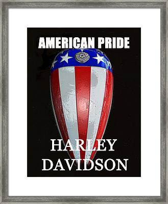 Hd American Pride Framed Print by David Lee Thompson
