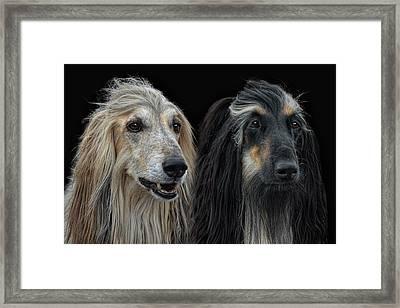 He And She Afghan Framed Print by Joachim G Pinkawa