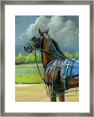 He Doesn't Like Thunder Framed Print