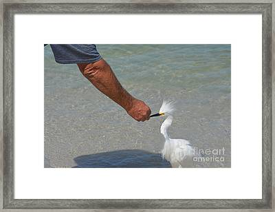 He Gave Me A Fish Framed Print by Don Columbus