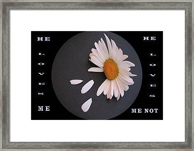 He Loves Me, He Loves Me Not Framed Print
