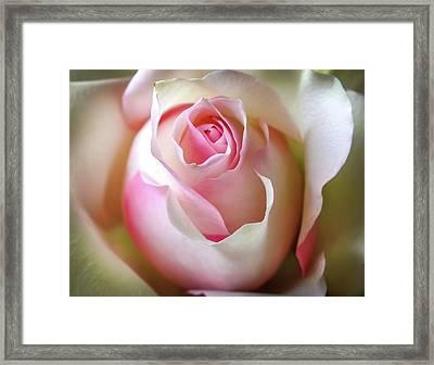 He Loves Me Still Framed Print by Karen Wiles