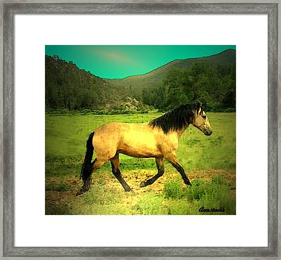 He Paweth In The Valley And Rejoiceth In His Strength  Framed Print by Anastasia Savage Ealy