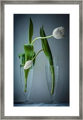 He Said She Said  Framed Print by Maggie Terlecki