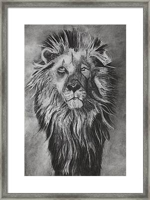He Watchers Over Framed Print by Angela Bull