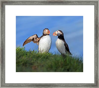 He Went That Way Framed Print by Betsy Knapp