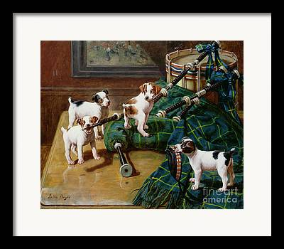 Gnawing Framed Prints