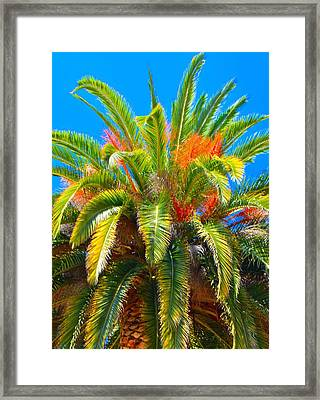 Head Dress Framed Print