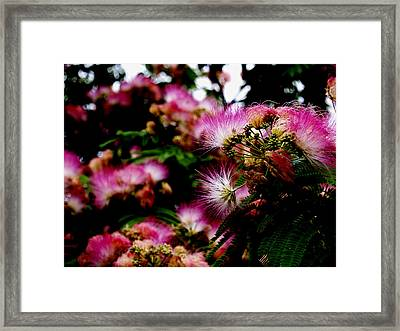 Head Dresses I Framed Print by James Granberry