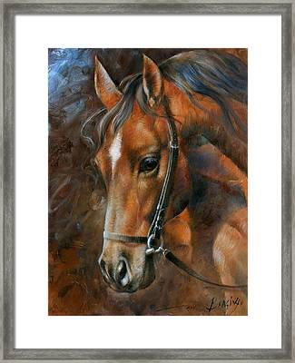Head Horse Framed Print by Arthur Braginsky