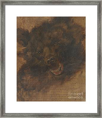Head Of A Bear Framed Print by Celestial Images