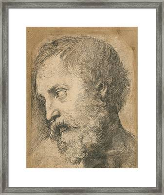 Head Of An Apostle In The Transfiguration Framed Print by Raphael